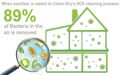 Chem-Dry of Columbia Bacteria removal infographic
