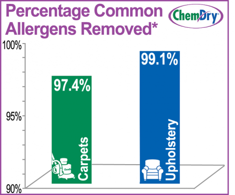 Upholstery Cleaning Graph